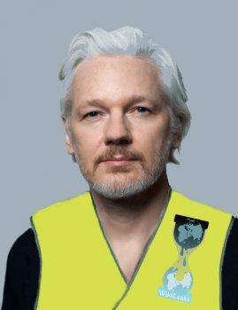 Assange call